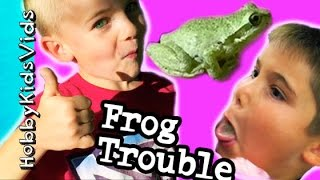 Frog Jumps Into Our House! Scares Hobbymom + Trouble Catching Hobbykidsvids