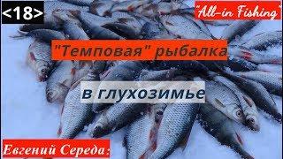 """Темповая рыбалка в глухозимье. """"All-in Fishing"""". Вып. 19."""