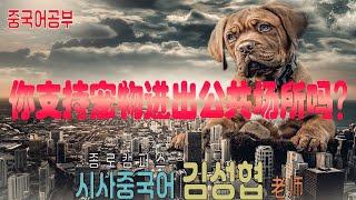 【중국어공부】이슈토론: 애완동물의 공공장소 출입