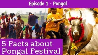 5 - FACTS ABOUT PONGAL FESTIVAL YOU MIGHT NOT KNOW