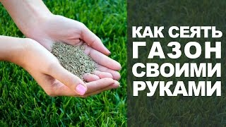 Как сеять газонную траву своими руками(Советы от компании Wolf Garten о том как правильно сеять газон. Купить семена травы для газона можно в нашем..., 2015-07-13T09:54:28.000Z)