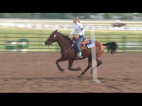Horse Speed Events at the Nebraska 4-H Horse Expo