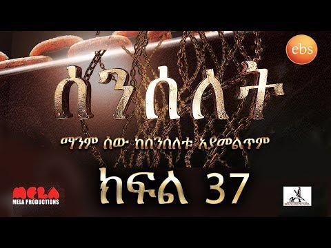 Senselet Drama S02 EP37 ሰንሰለት ምዕራፍ 2 ክፍል 37