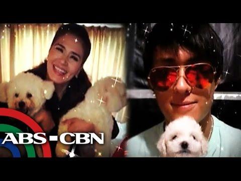 Kilalanin ang mga 'celebrity pets'