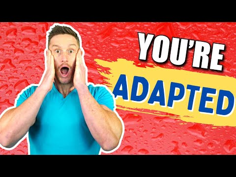 4 Ways to Get Fat Adapted (Really Quickly)