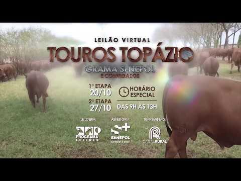 Leilão Topázio 20 e 27 out19 chamada