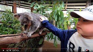 20191124 호주가족여행