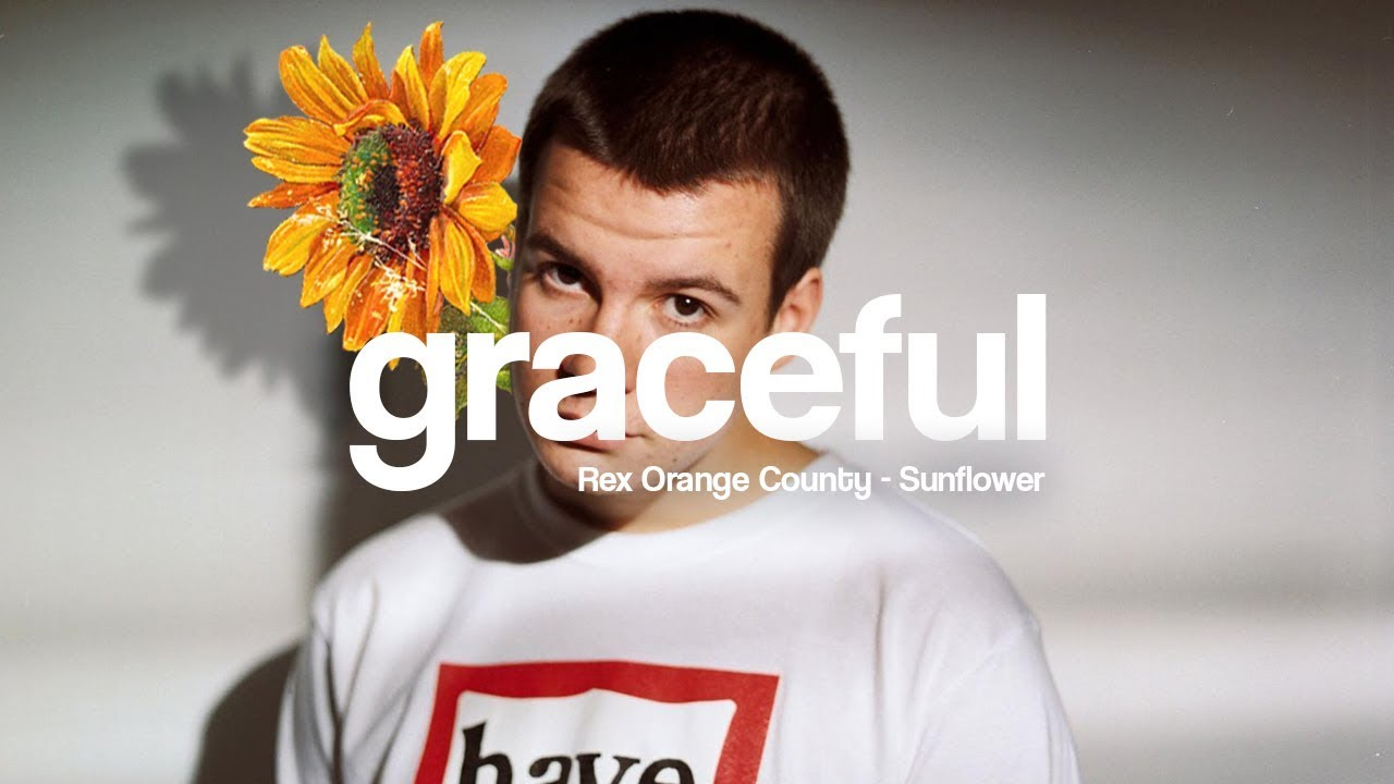 Rex Orange County - Sunflower (Lyrics) - YouTube