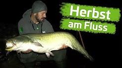 HERBST SESSION am FLUSS | Auf WALLER mit Jan Lehmann