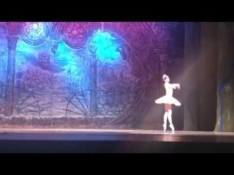 El Ballet Ruso deslumbra a los lucenses con 'El Cascanueces'