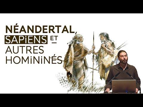 H. sapiens, Néandertal et compagnie (H. floresiensis, Dénisoviens, etc.) (3/3)