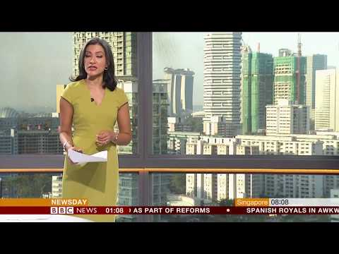 Sharanjit Leyl BBC Newsday April 5th 2018