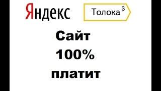 Заработок без вложений на Яндекс.Толока!