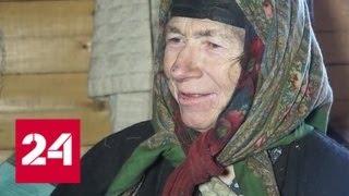 Пристройство котят от Агафьи Лыковой обернулись служебным расследованием - Россия 24