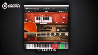 Sunbird Guitar library by Acousticsamples