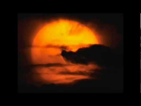 VENUS THE TINY DANCER - SKYVIEWS