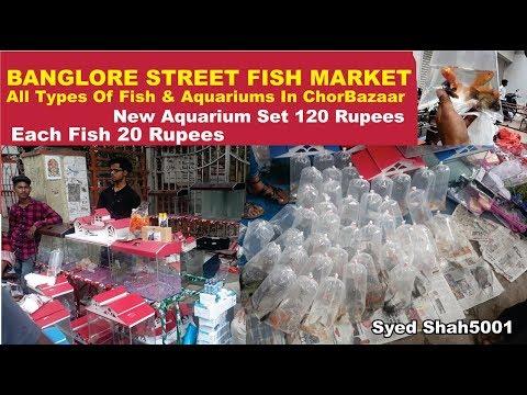 Banglore Street Fish Market TOUR Banglore Sunday Bazaar