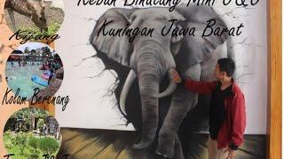 Video Wisata Kuningan | Kebun Binatang Mini J&J | Linggarjati download MP3, 3GP, MP4, WEBM, AVI, FLV Agustus 2018