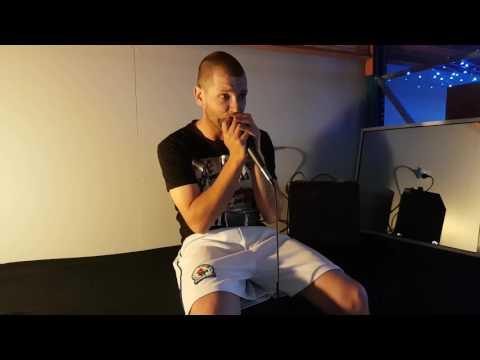 Harmonica beatbox