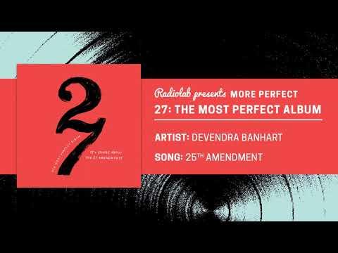 27: The Most Perfect Album | Devendra Banhart | 25th Amendment