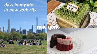 vlog) 뉴욕 직장인의 봄날의 일상 기록. 센트럴파크…