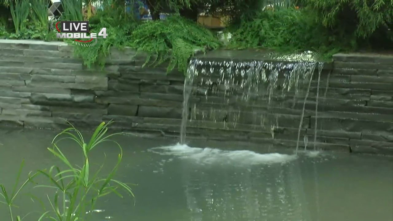 Annual home and garden show comes to minneapolis youtube - Home and garden show minneapolis ...