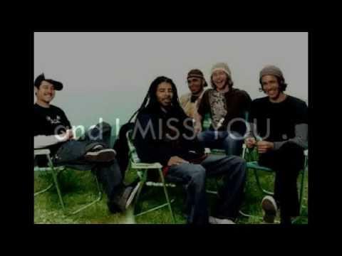 Incubus : I Miss You ( lyrics )