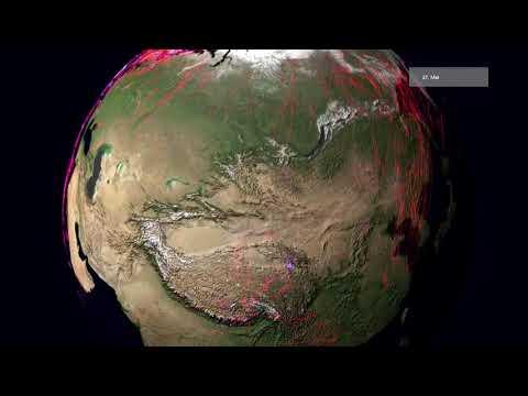 Global animal movements based on Movebank data (globe)