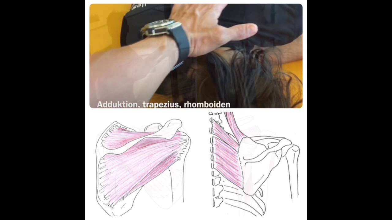 nackenverspannung übungen