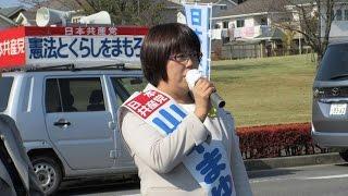 つくば市議会議員選挙候補者、日本共産党・山中まゆみの第一声です。