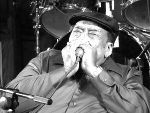 James Cotton Blues Band-Don't Start Me Talkin'