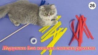 Игрушки для котят своими руками #Кошки #Коты #Котята #Прикольные #Веселые #Красивые #Играют