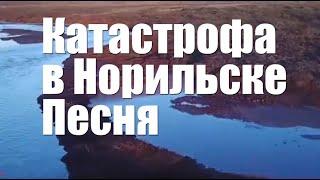 Разлив нефти в Норильске  Дед Архимед