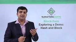 Blockchain - Exploring a demo hash and block