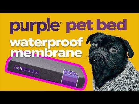 purple-pet-bed-waterproof-membrane
