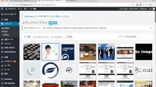 WordPressブログ無料テーマEmanonサイドバーウィジェット設定方法