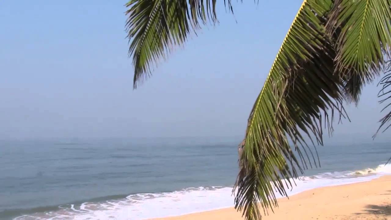 trip to goa 4,13,787 reviews of goa lodging, food, and sights by other travelers tripadvisor is the source for goa information.