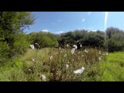 South Africa field course 2014 - Addo National Park: Giving back to the community
