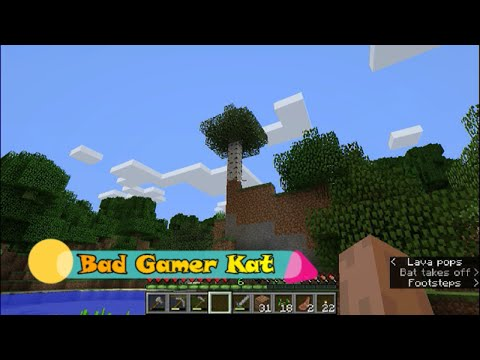 Minecraft 12.5,  Ep. 2, Clearing the land.
