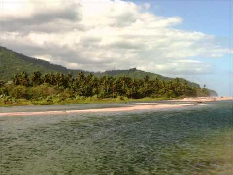 Palomino La Guajira Colombia HD