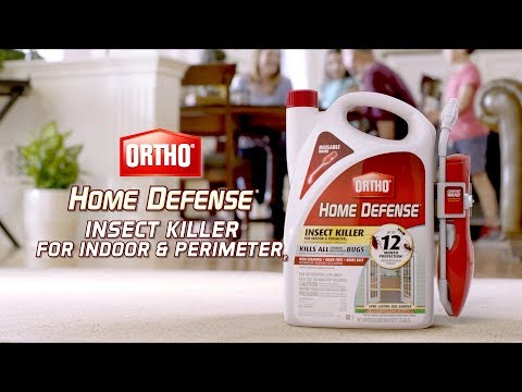 How To Kill And Protect Against Insects Indoors Using Ortho® Home Defense With Comfort Wand