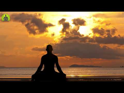 Meditation Music Relax Mind Body l Positive Energy Healing Music l Yoga Relaxing Music l Sleep Music