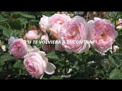 Laura Murcia - Si Te Volviera a Encontrar; Letra