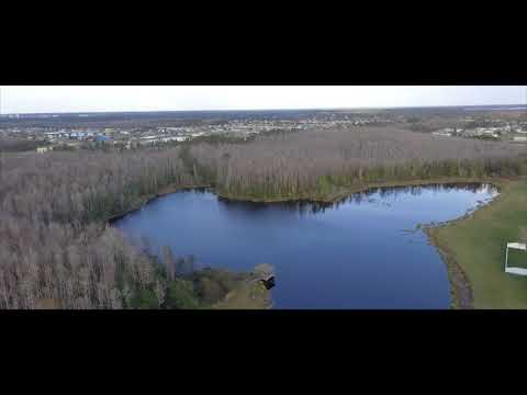 HD Drone Video | Florida