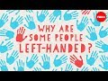 watch he video of Why are some people left-handed? - Daniel M. Abrams