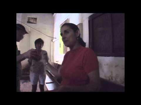 Cocoa Plantation - Tape 5