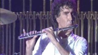 Pooh - La Gabbia - Parsifal (strumentale)