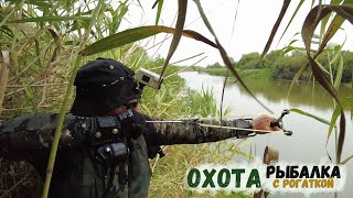 Рыбалка с Рогаткой в дебрях камыша на крупную рыбу