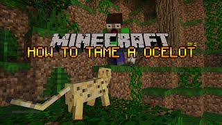 Minecraft - How To Tame A Ocelot [1.8]