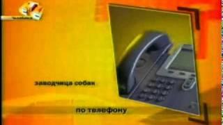 Не добропорядочный заводчик Колязова.mp4(, 2010-08-11T05:29:04.000Z)